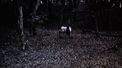 Ringu-Sadako