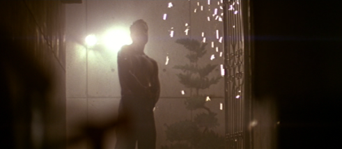 John McClane, Die Hard